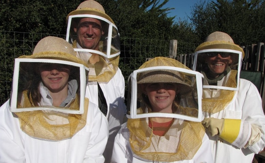 Family Bee Keeping Carmel Valley Ranch CA