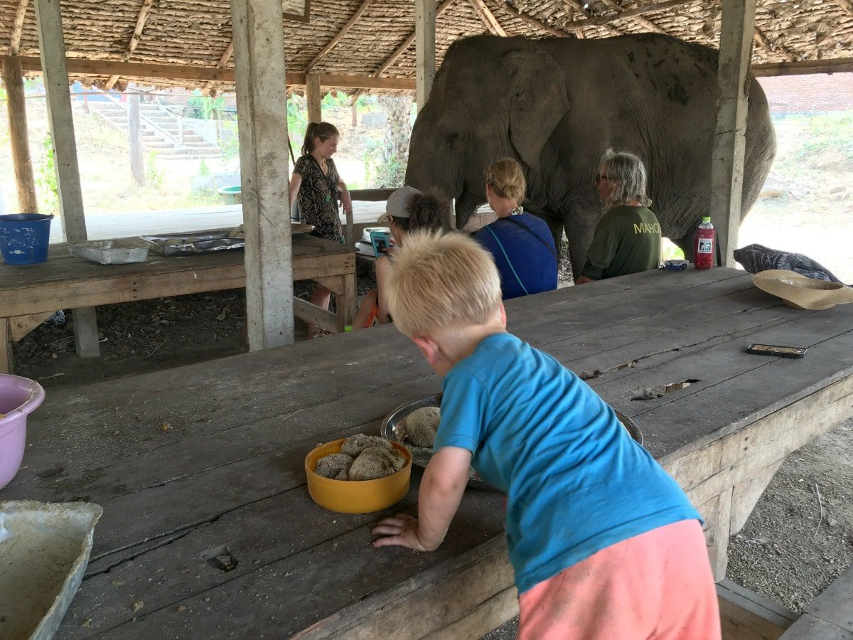 Preparing the food for the elephants